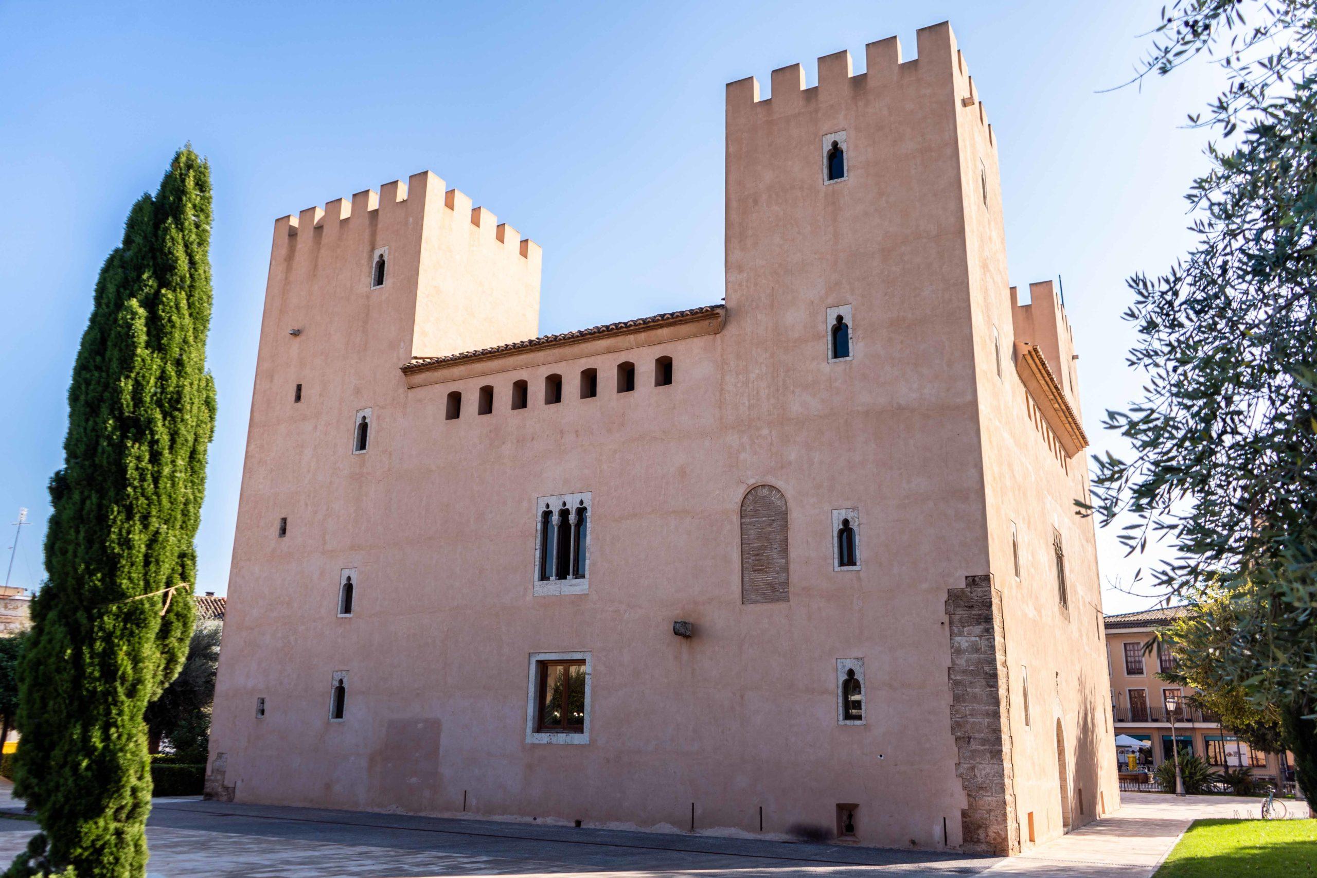 Castillo o Placio de los Sorreels
