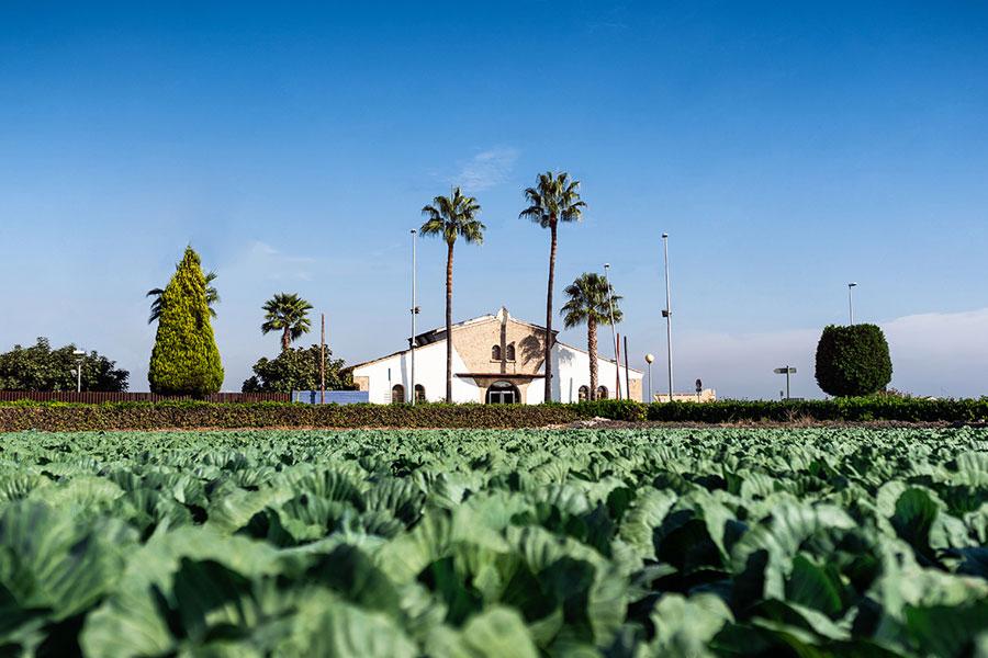 Museo de lHorta en Almassera